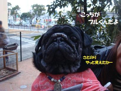 DSC01549_20120827193803.jpg