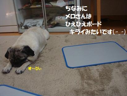 DSC01660_20120814133224.jpg