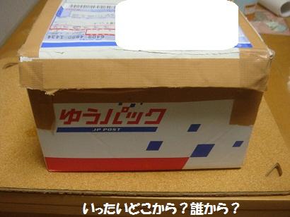 DSC01930_20120907043511.jpg