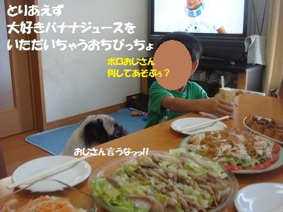 DSC01938_20130106023116.jpg