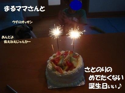 DSC01946_20130105034808.jpg