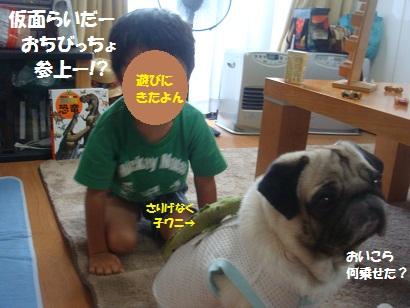 DSC02029_20130105034809.jpg