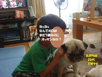 DSC02040_20130106023116.jpg
