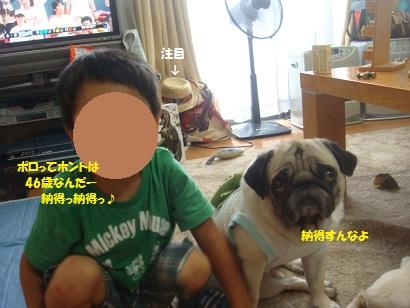 DSC02042_20130106131551.jpg