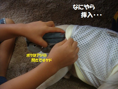 DSC02044_20130106023115.jpg