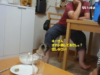 DSC02068.jpg