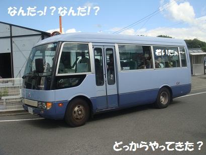 DSC02319_20130107005130.jpg