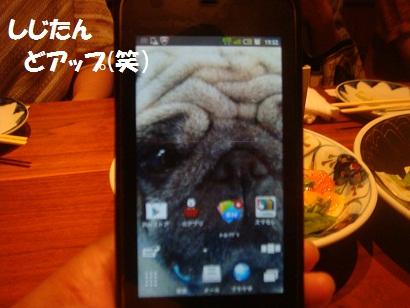 DSC02362_20130107003603.jpg