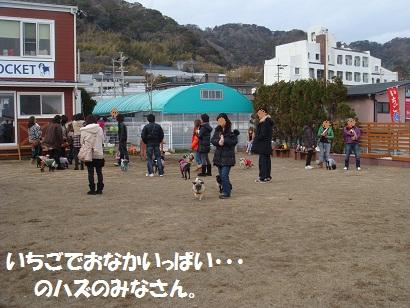 DSC02528_20120911050345.jpg