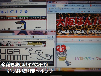 DSC02729_20120922034053.jpg