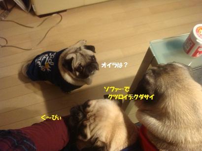 DSC02911_20120921051333.jpg