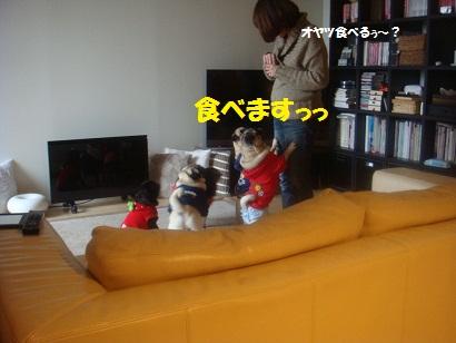 DSC02928_20120921083156.jpg