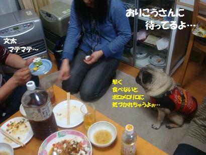 DSC03256_20120923125350.jpg