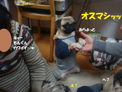 DSC03401_20120923155459.jpg