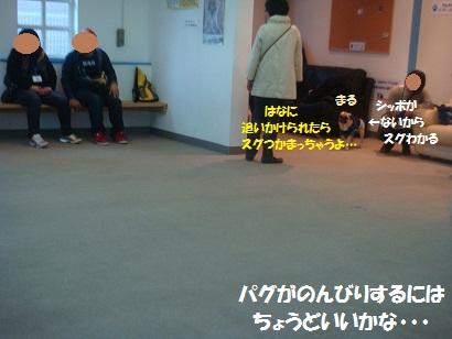 DSC03678_20120926134107.jpg