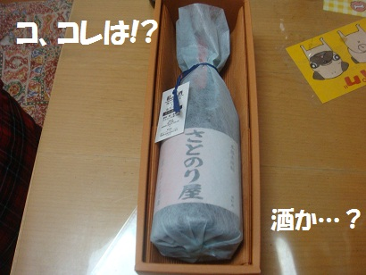 DSC03936_20121001190032.jpg
