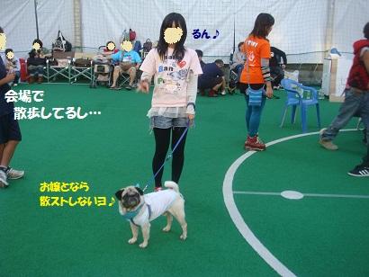 DSC04256_20121016051241.jpg