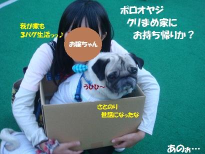 DSC04320_20121016051241.jpg