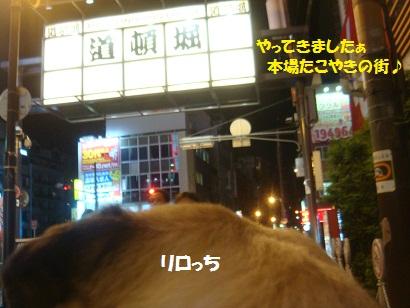DSC04369_20121012013439.jpg