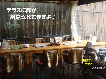 DSC04505_20121028023749.jpg