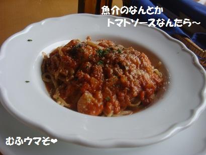 DSC04533.jpg