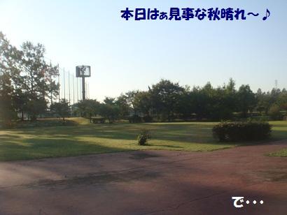 DSC04621_20121023214319.jpg