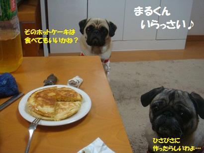 DSC04685_20121029132053.jpg