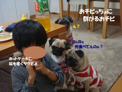DSC04719_20121029140106.jpg