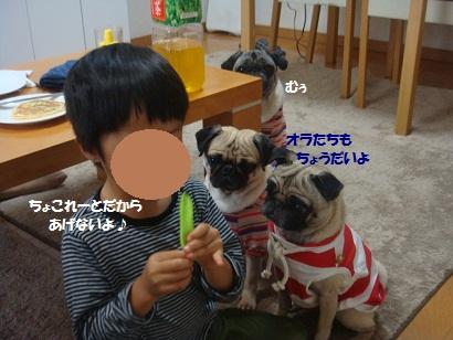 DSC04722_20121029140106.jpg