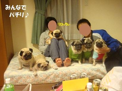 DSC04742_20121015184410.jpg