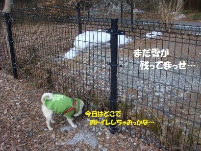 DSC04787_20121017120520.jpg