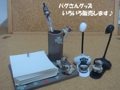 DSC04843_20121029151442.jpg