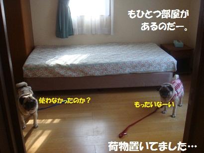 DSC04878_20121017132406.jpg
