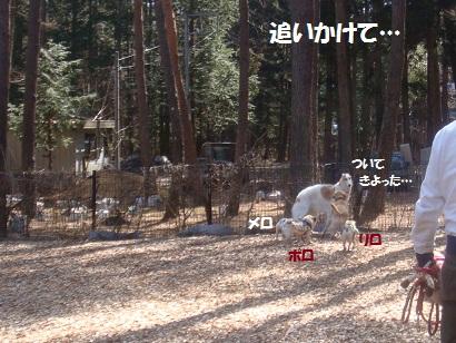 DSC04899_20121017150619.jpg