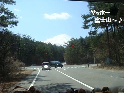 DSC04917_20121017152916.jpg