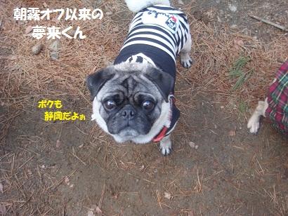 DSC04938_20121019211019.jpg
