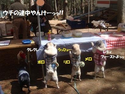 DSC04974_20121019204640.jpg