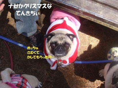 DSC04983_20121019203029.jpg