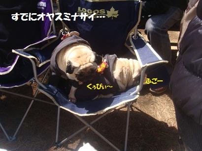 DSC04998_20121019235504.jpg