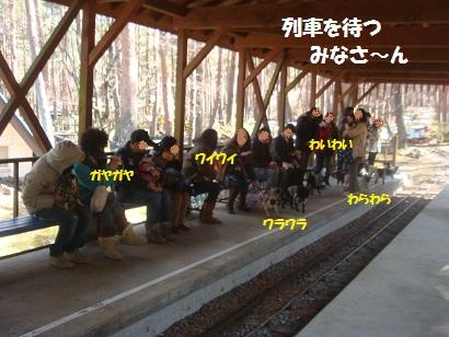 DSC05049_20121019233358.jpg