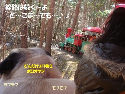 DSC05059_20121019233355.jpg