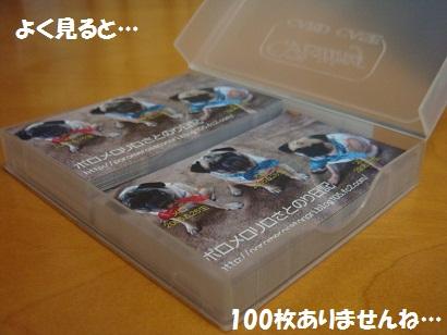 DSC05088_20121106194519.jpg