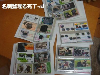 DSC05095_20121106194519.jpg
