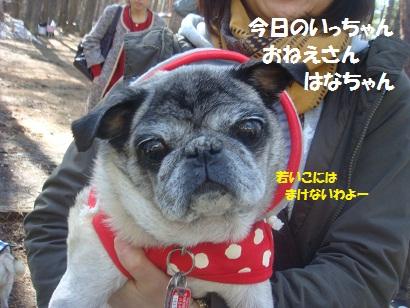 DSC05147_20121020020305.jpg