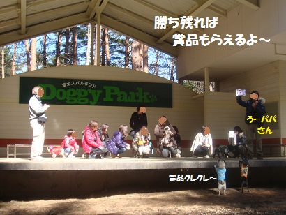 DSC05151_20121020010434.jpg
