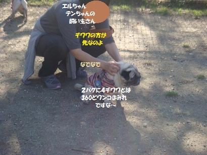 DSC05154_20121113200401.jpg