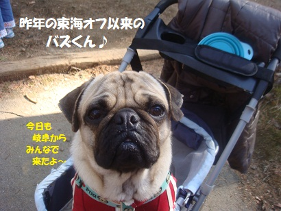 DSC05171_20121019211020.jpg