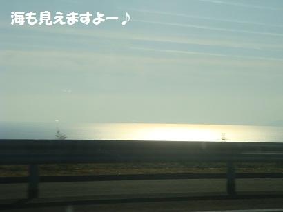 DSC05217_20121114010316.jpg