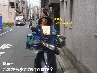 DSC05221.jpg