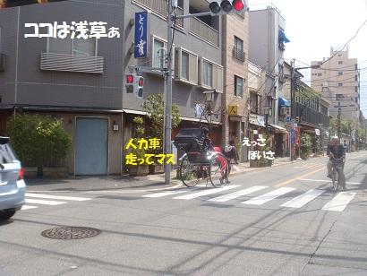 DSC05223_20121020025005.jpg